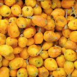 Marula Oil Benefits
