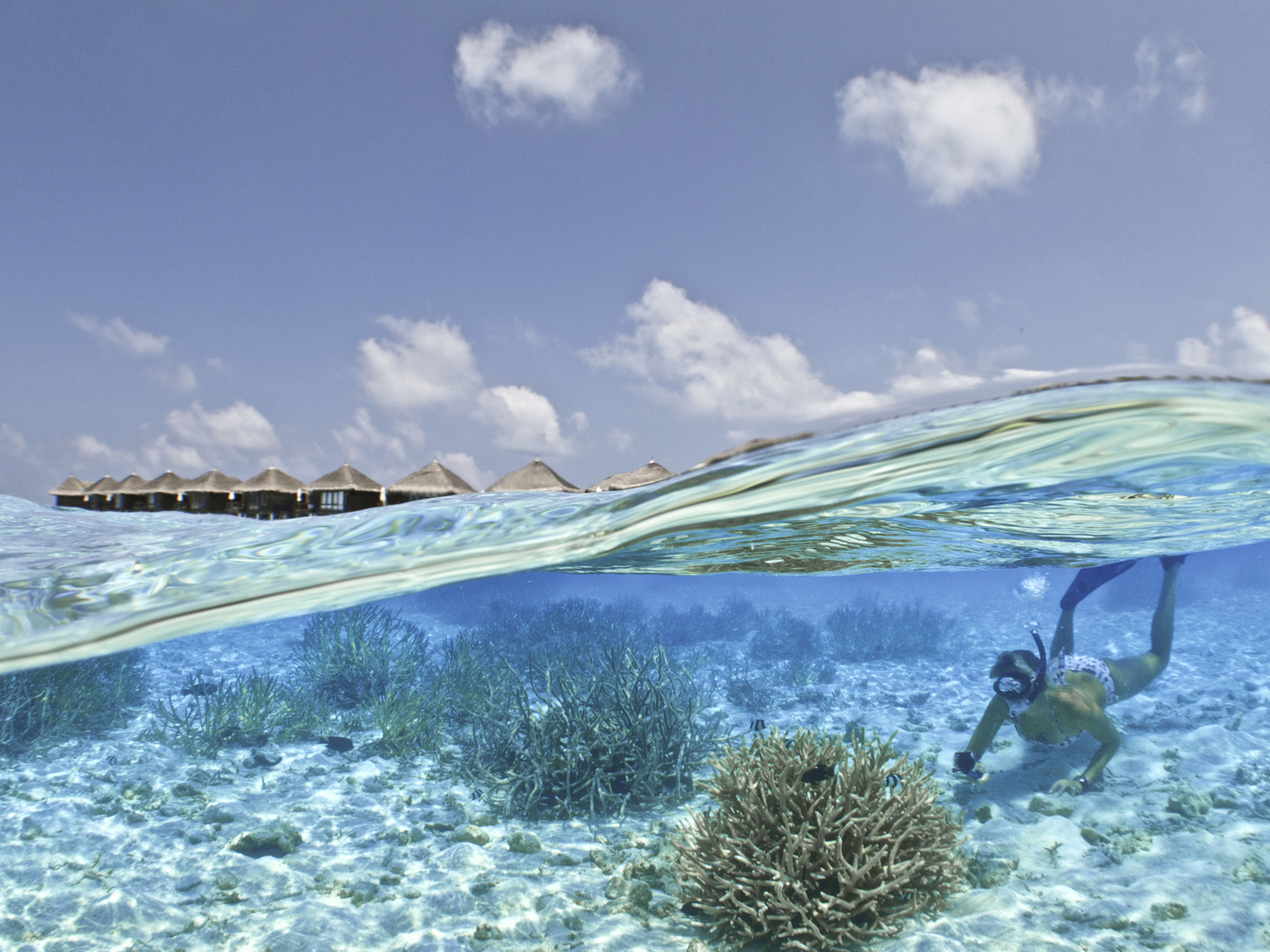 Snorking with reef safe sunscreen
